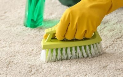 Why You Should Always Keep Your Carpets Clean